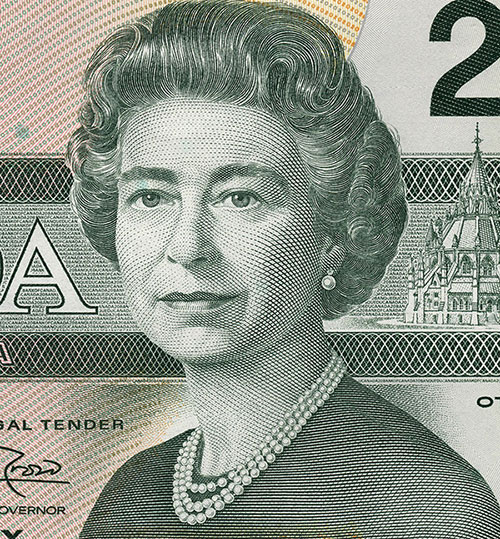 Detail of $20 note, Birds of Canada series, Bank of Canada, issued 29 June 1993